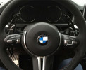 Paddle shifter extensions - BMW